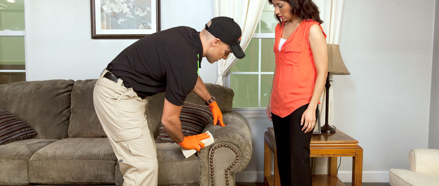 Roanoke Rapids, NC carpet upholstery cleaning